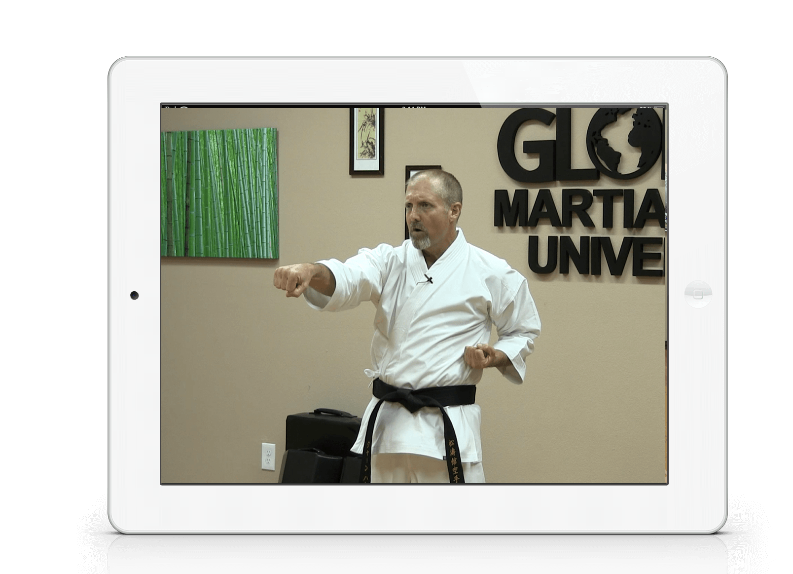 Learn Authentic Shotokan with our Traditional Course of Study